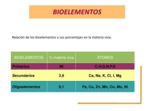 bioelementos-1-728