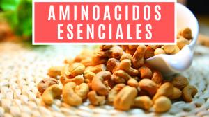 aminoacidos esenciales