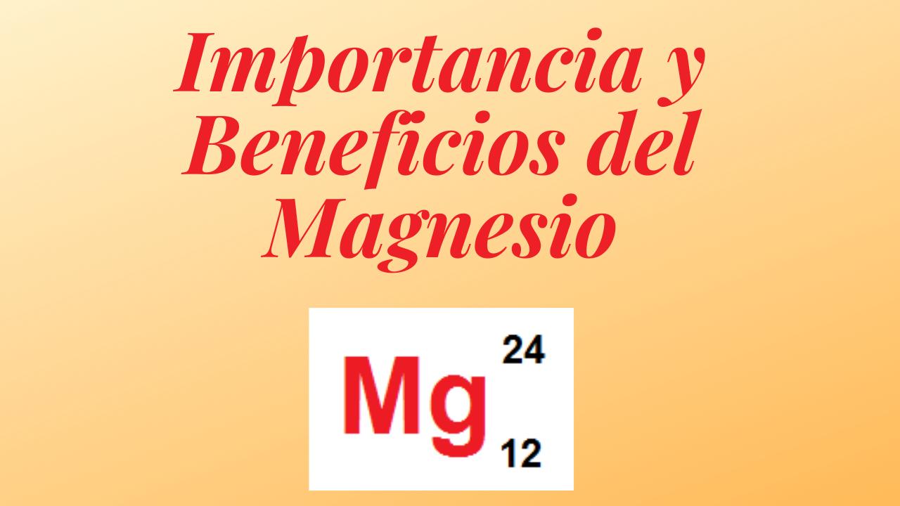 importancia y beneficios del megnesio